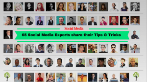 social_media_expert_roundup_tipstricks-3