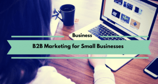 B2B Marketing for Small Businesses