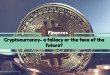 Cryptocurrency- a fallacy or the face of the future?