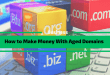 How to Make Money Flipping Aged Domains