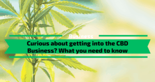 CBD Business? What you need to know