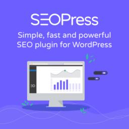 SEOPress WP Plugin