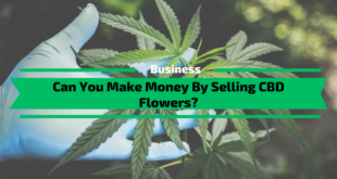 Can You Make Money By Selling CBD Flowers?
