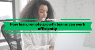 How lean, remote growth teams can work efficiently