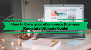 How to Grow your eCommerce Business Fast [Ultimate Guide]