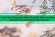 Best Blog Niches Ideas
