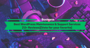 Best WordPress Mainteance and Support Services