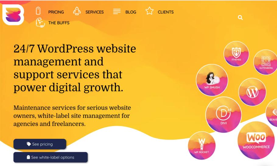 WPBuffs - WordPress Maintenance Service