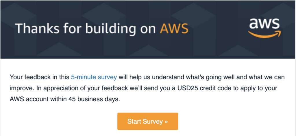 Amazon Feedback Email Campain Example