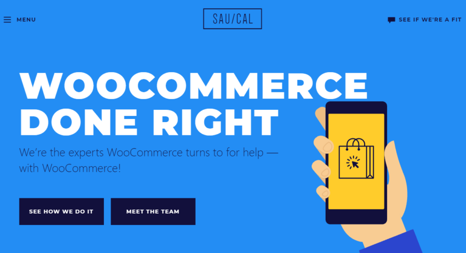 SauCal - WordPress Development Company